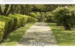 2 Adjacent Burial Plots for Sale Location Sharon Memorial Park, Sharon, MA
