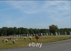 2 (Side by Side) Cemetery Plots at Mountlawn Memorial Park