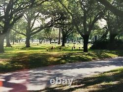 CEMETERY LOTS (3 Side-By-Side) BROOKSIDE Memorial Park, Eastex Fwy, HOUSTON