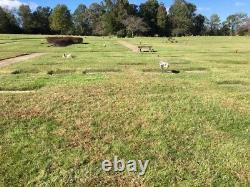 Cemetery Plots Meadowridge Memorial Park