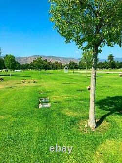 Companion Lawn Crypt for Sale in Oakdale Memorial Park