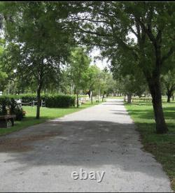 Double Lawn Crypt Cemetery Plot In Dade South Memorial Park Miami Florida