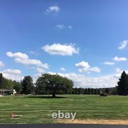 Family Plots Cedar Lawn Memorial Park, four plots Dignity Memorial Nation wide
