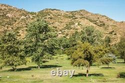 Garden of Devotion burial plot Singing Hills Memorial Park $5,500