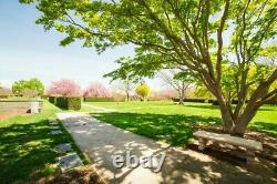 Pinelawn Memorial Park Garden Of Sanctuary 2 Gravesites #53 And 54