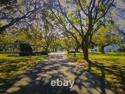 Sarasota Memorial Park, 1 Cemetery Plot