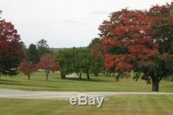 Two Cemetery Mausoleum Crypt Burial Plots Phila Memorial Park Frazer PA VG deal